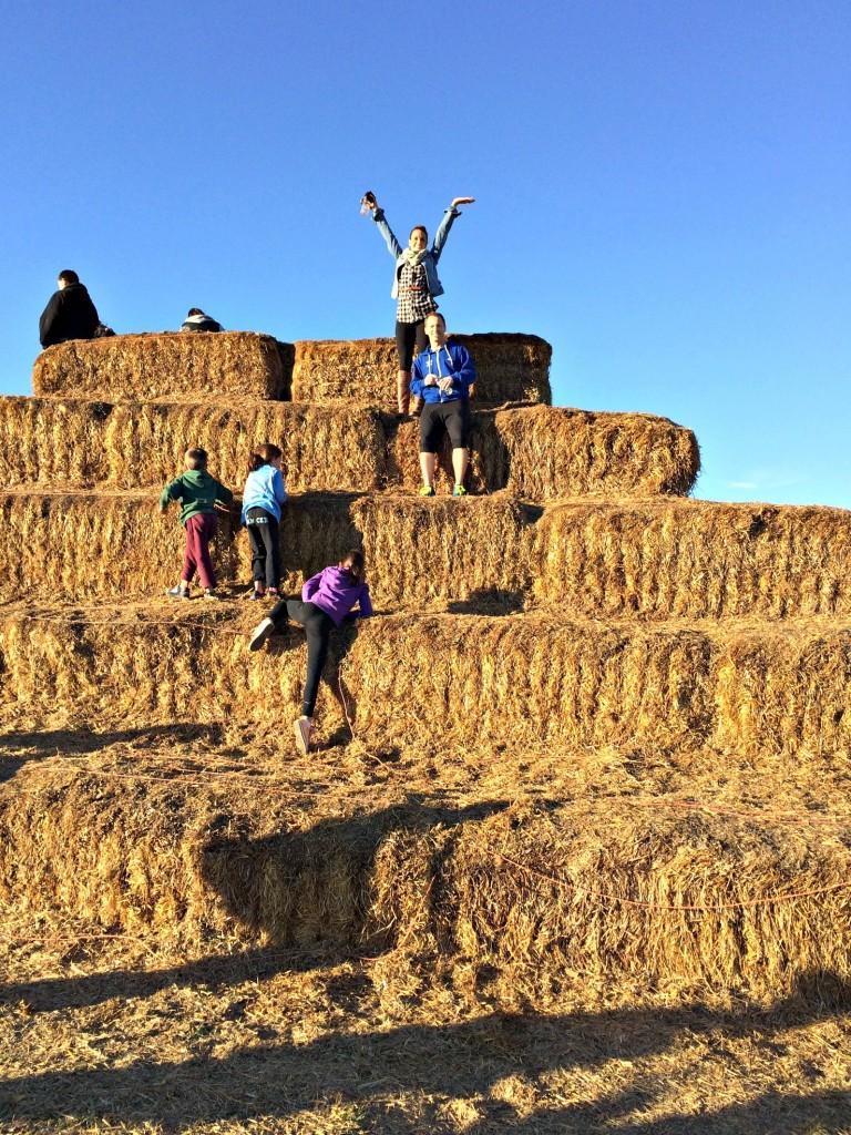 huge hay stack