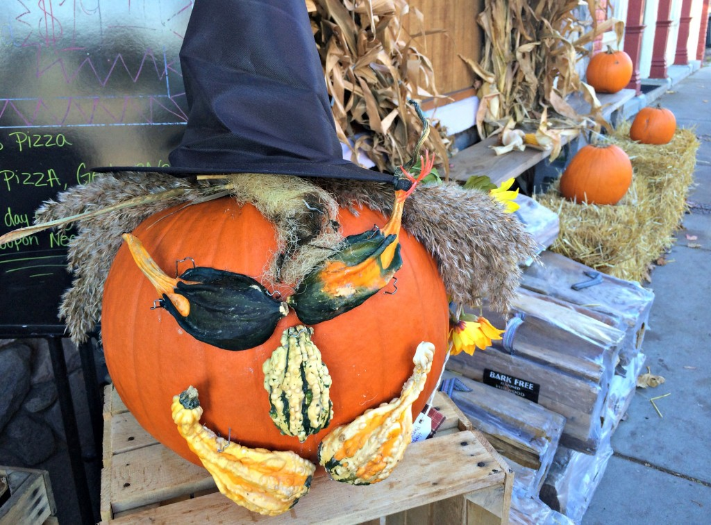 Pumpkin decorated in gourds