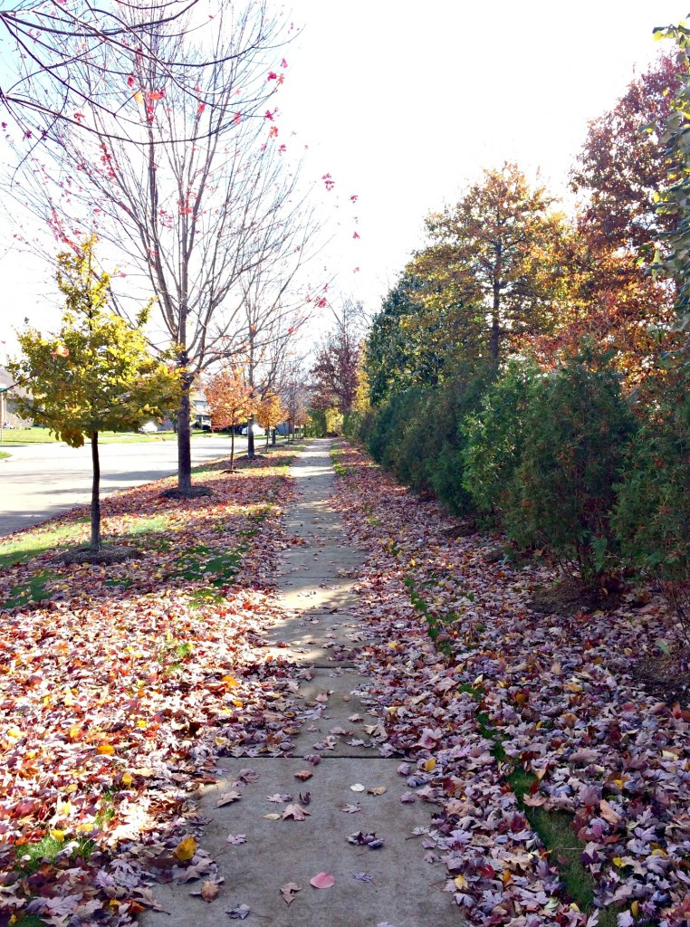 fall neighborhood run