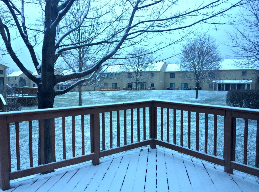 first real snow of winter 2014