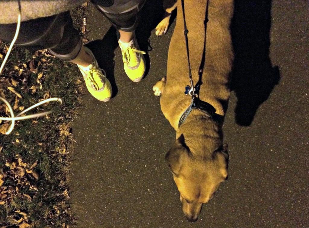 running in the dark with roadie