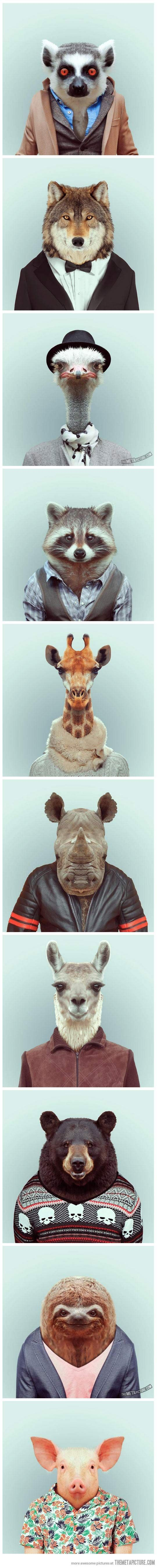 funny animals dressed as humans