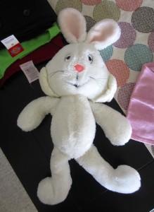 Childhood stuffed animal