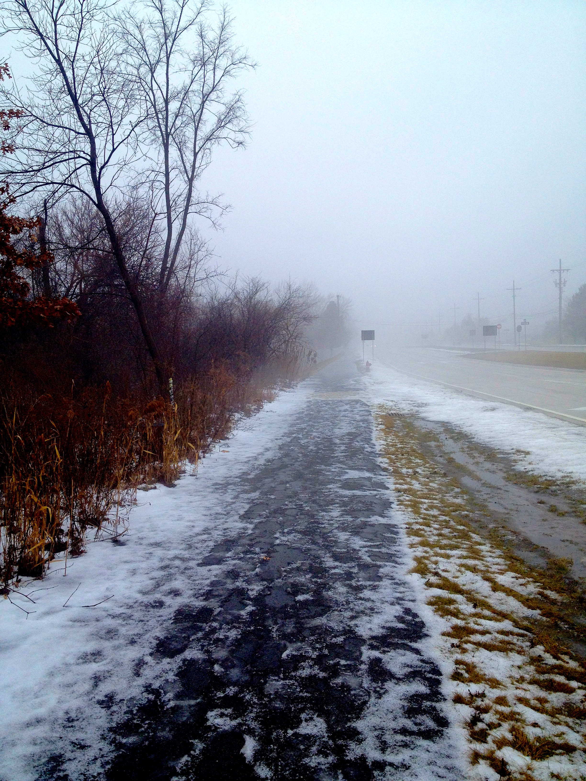 fog and melted snow