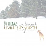 What I've Learned Living Up North