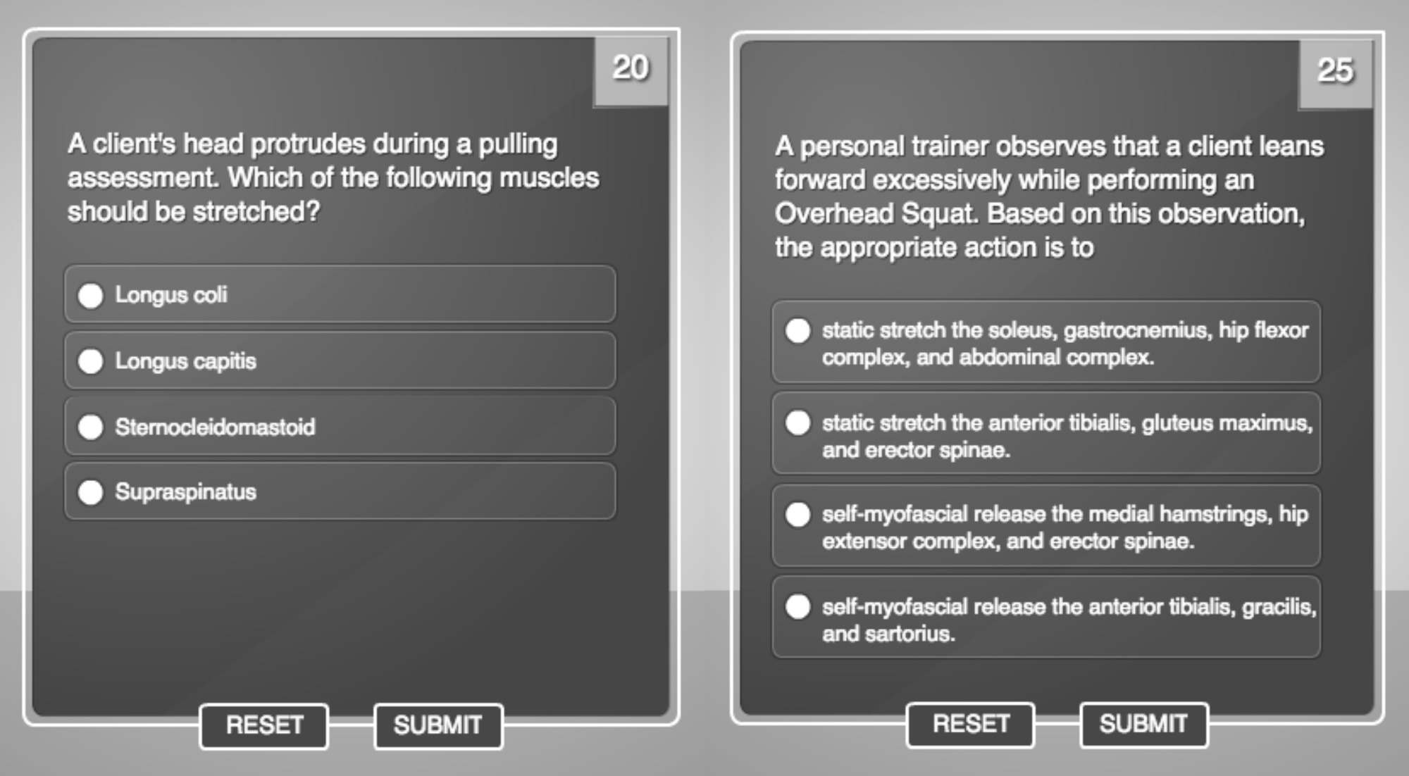 anatomy questions on CPT with NASM