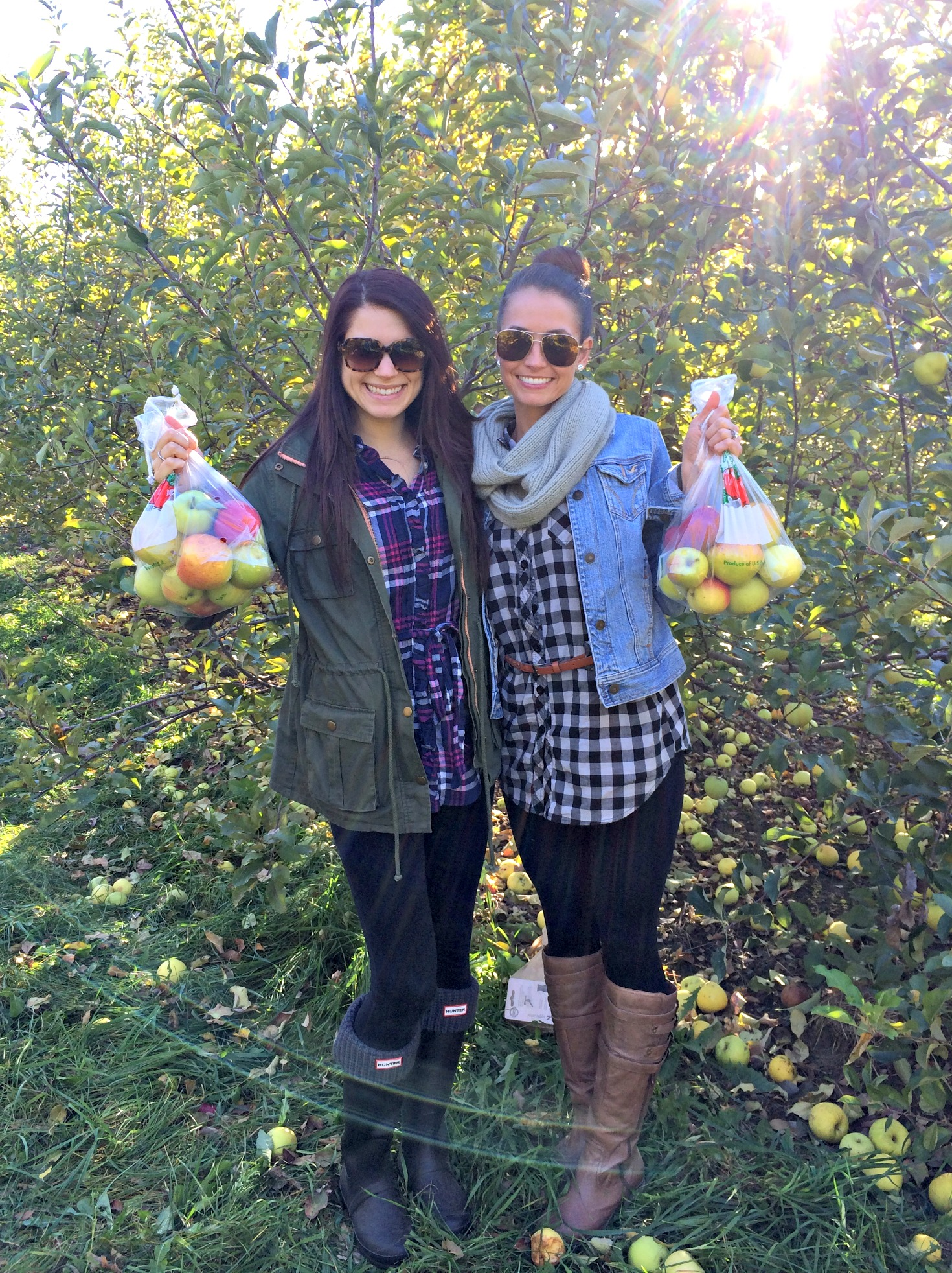 apple picking with alex success