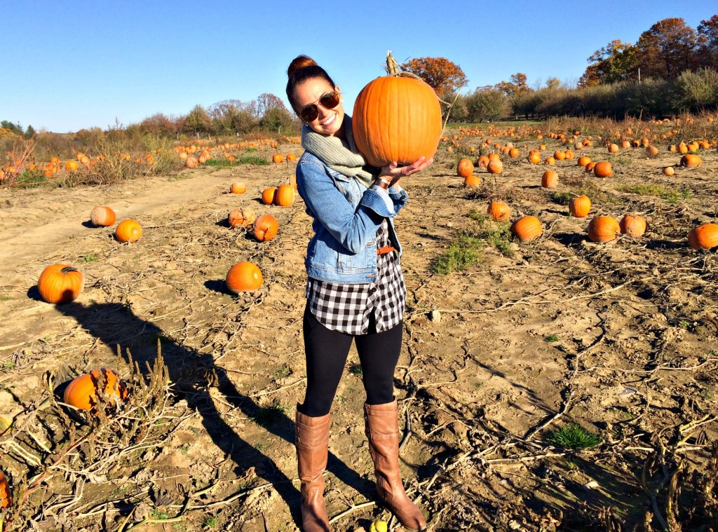 pumpkin patch win