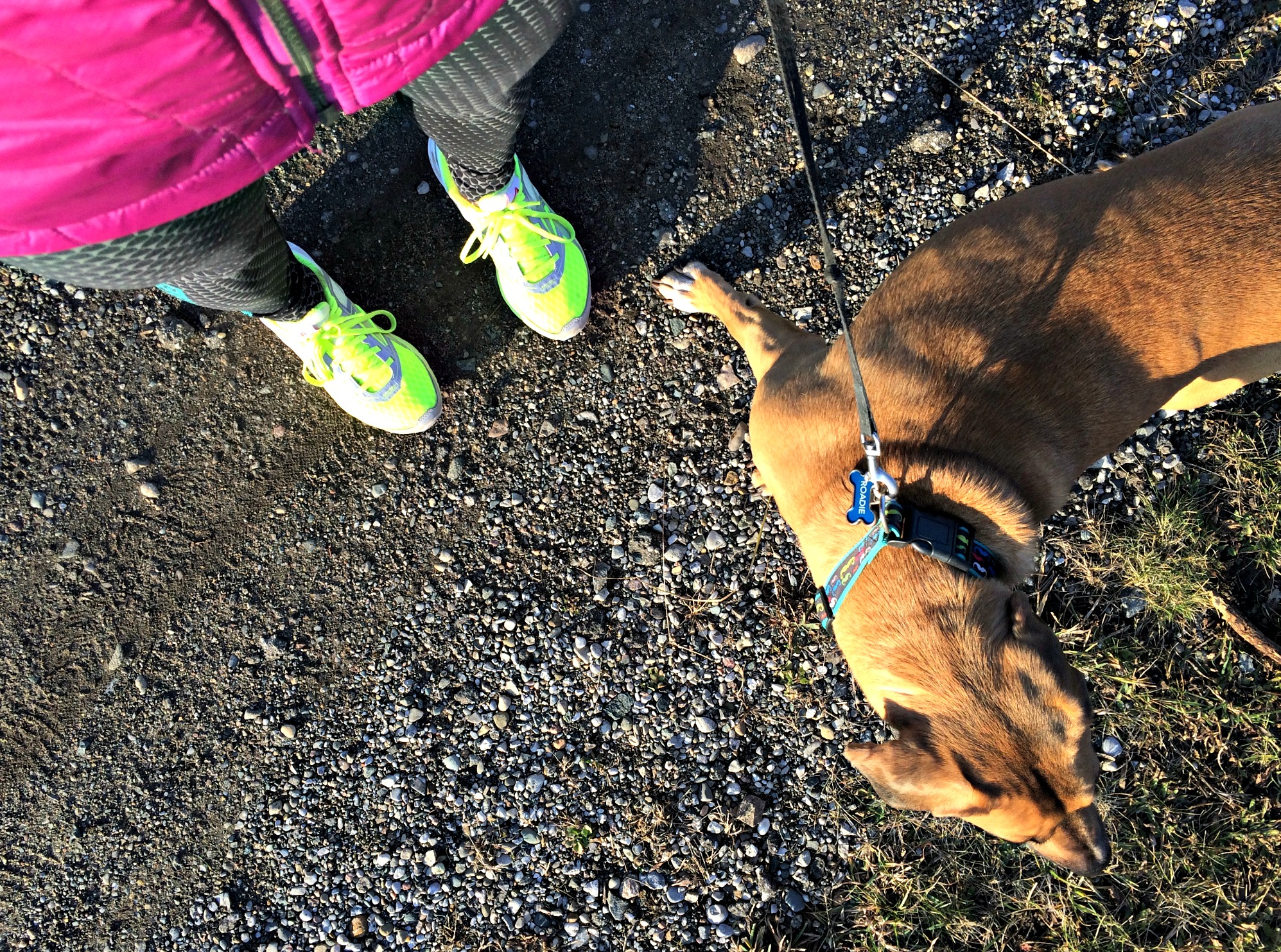 running trails in winter with roadie