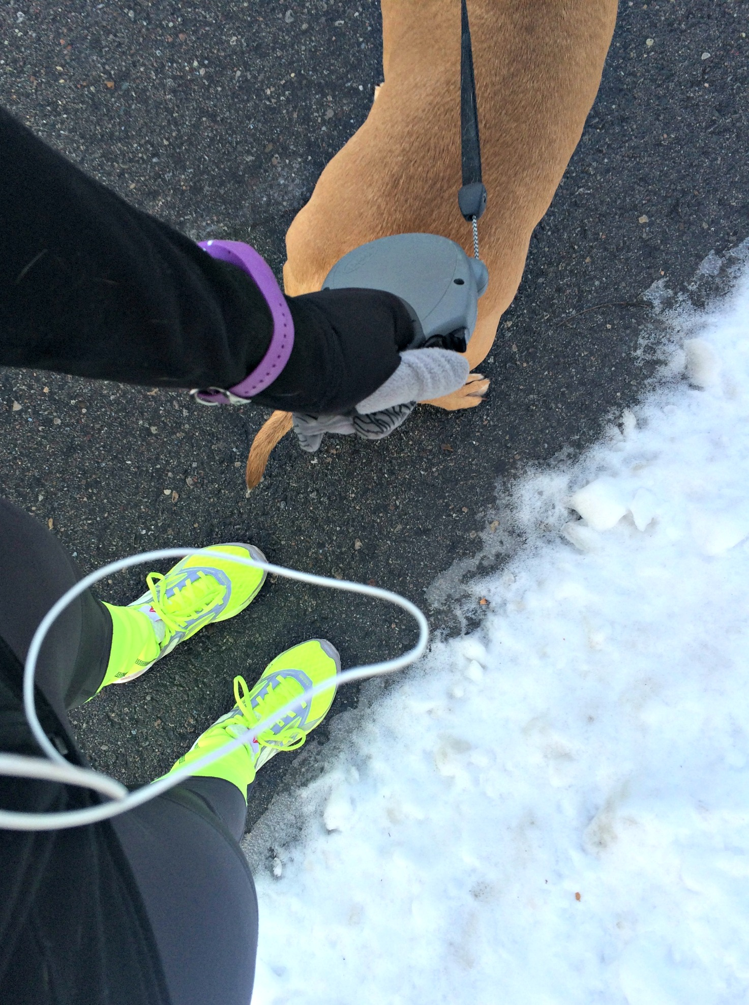 winter running with roadie