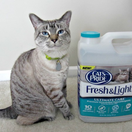Aspen with cat's pride fresh & light ultimate care cat litter