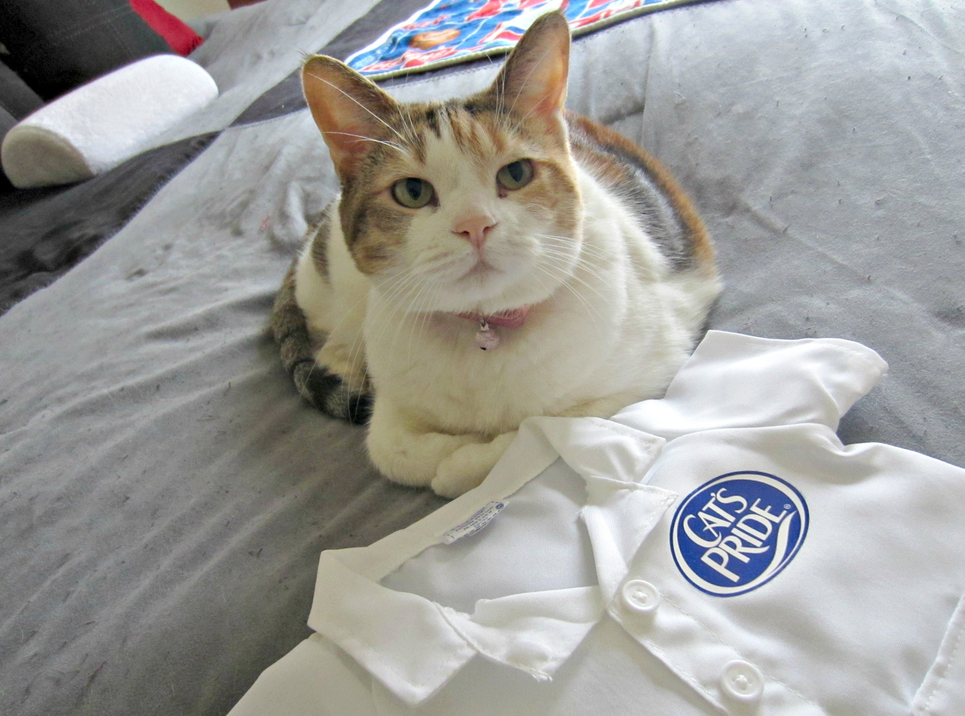 cali with cat's pride lab coat