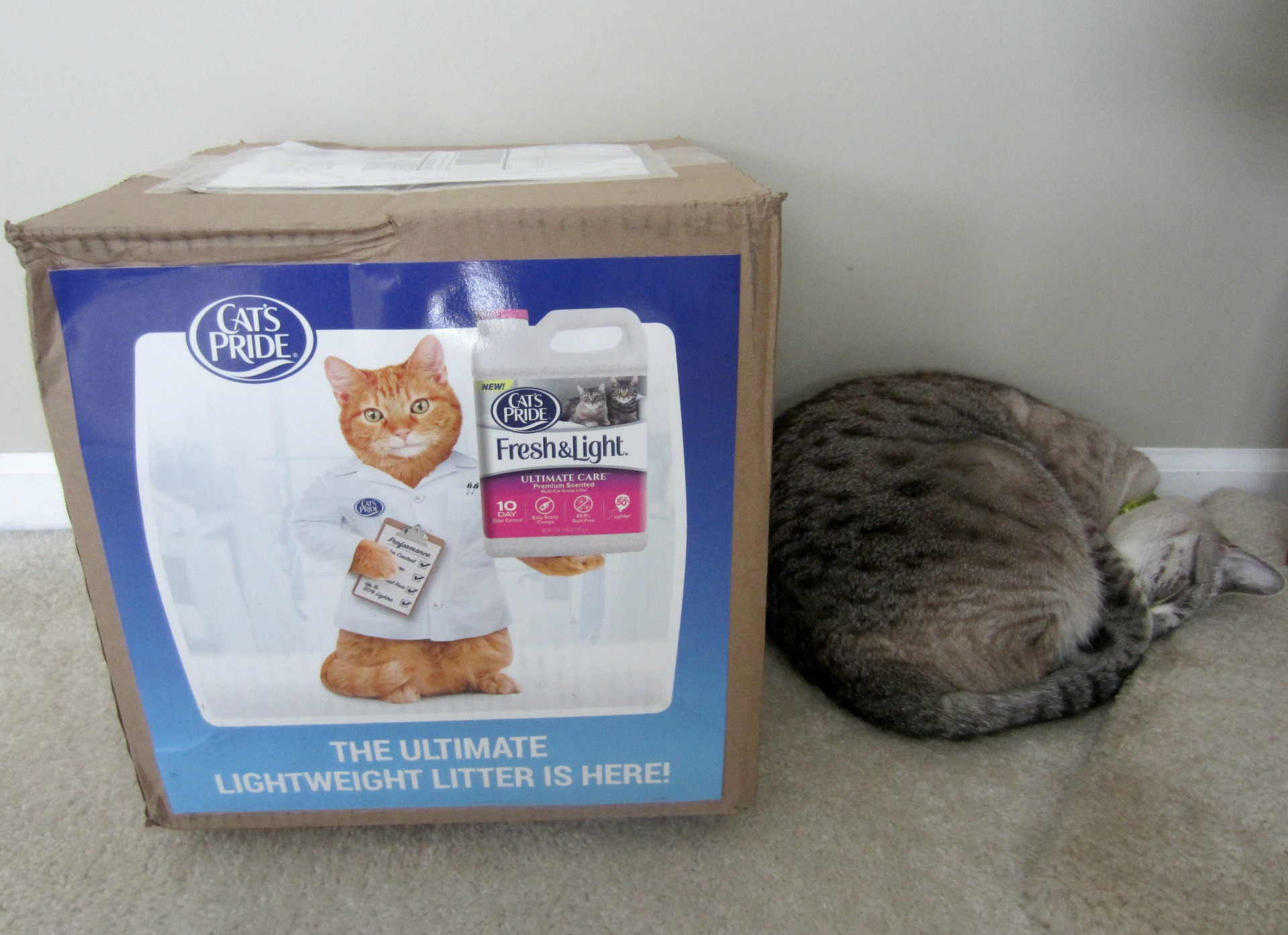 cat's pride delivery for cats