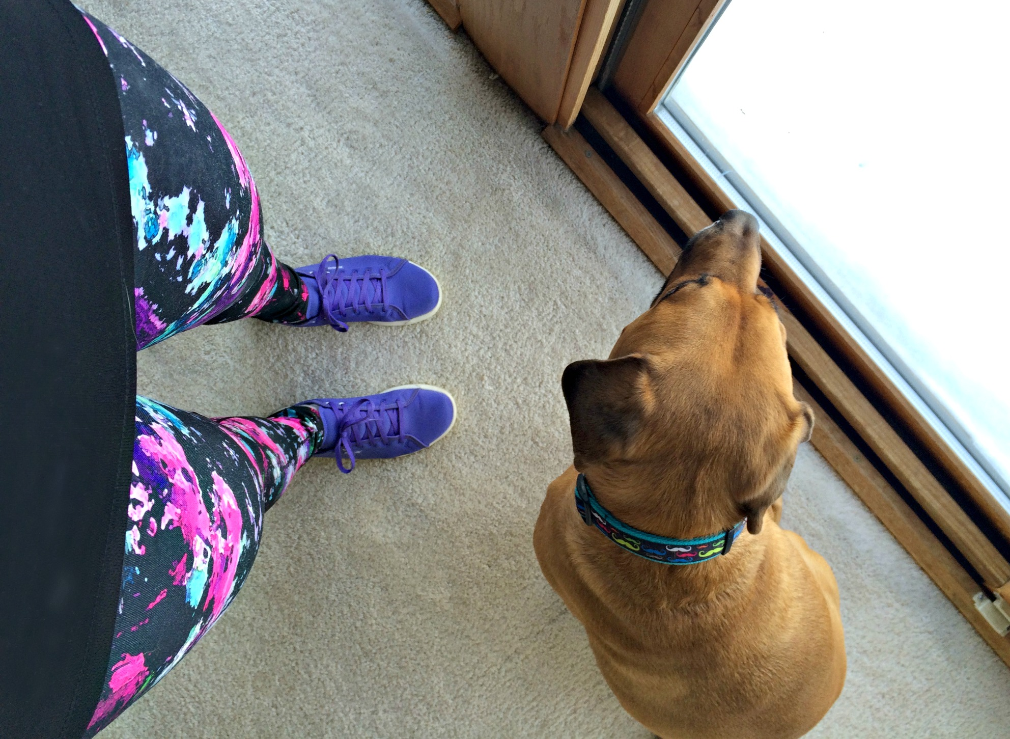 fun leggings and reebok skyscapes