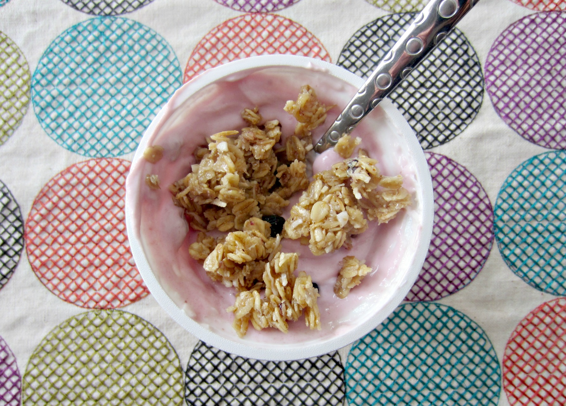 greek yogurt with vans soft granola