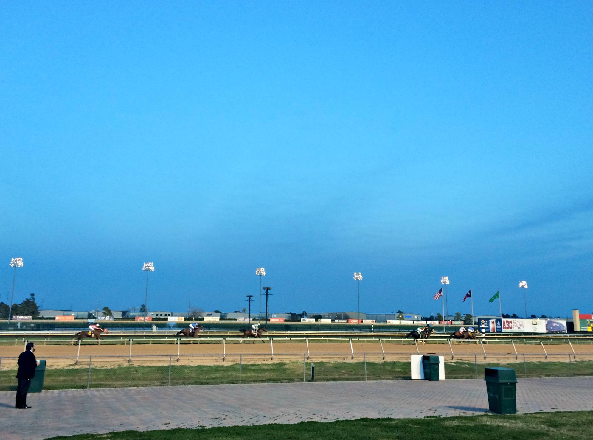 sam houston horse track