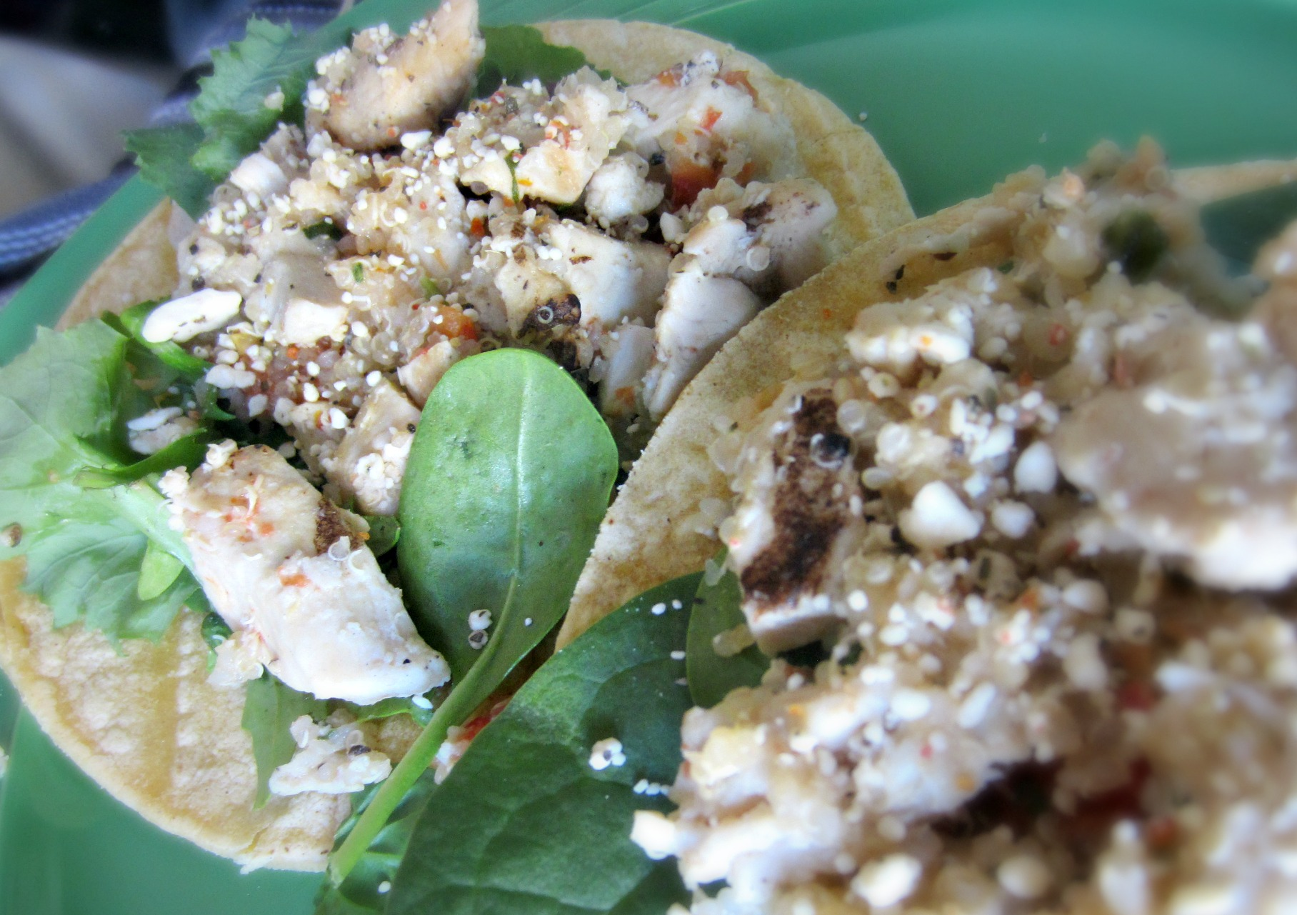 chicken and quinoa salad on corn tortillas