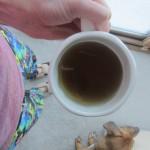 hot tea with roadie
