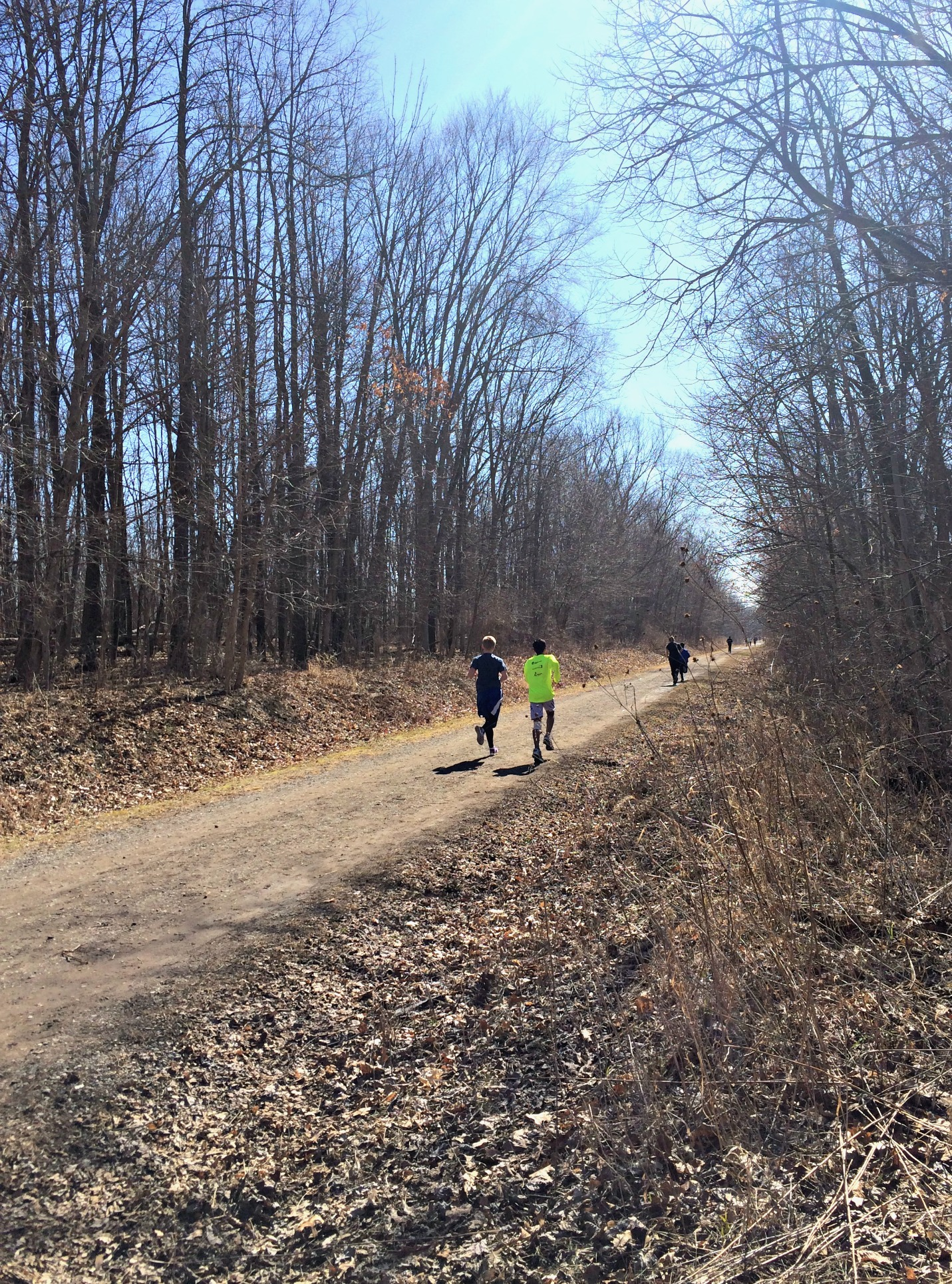 running group on the trails