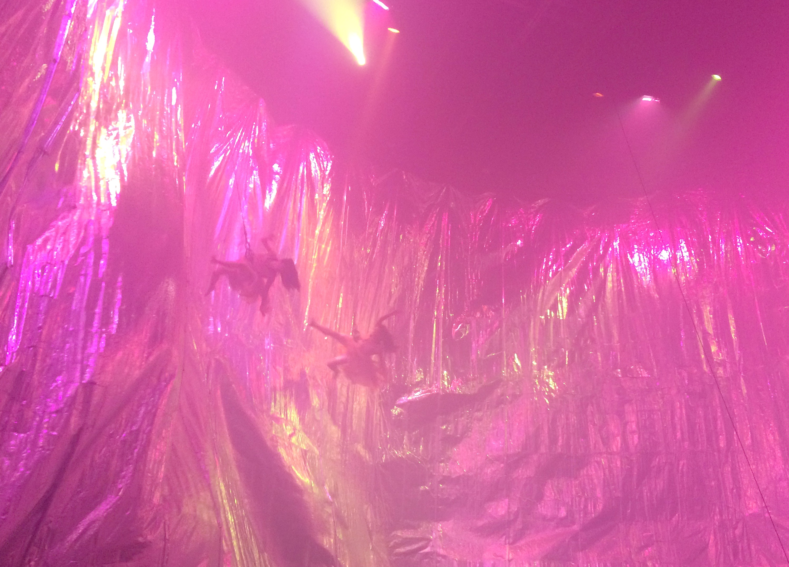 fuerza bruta show new york