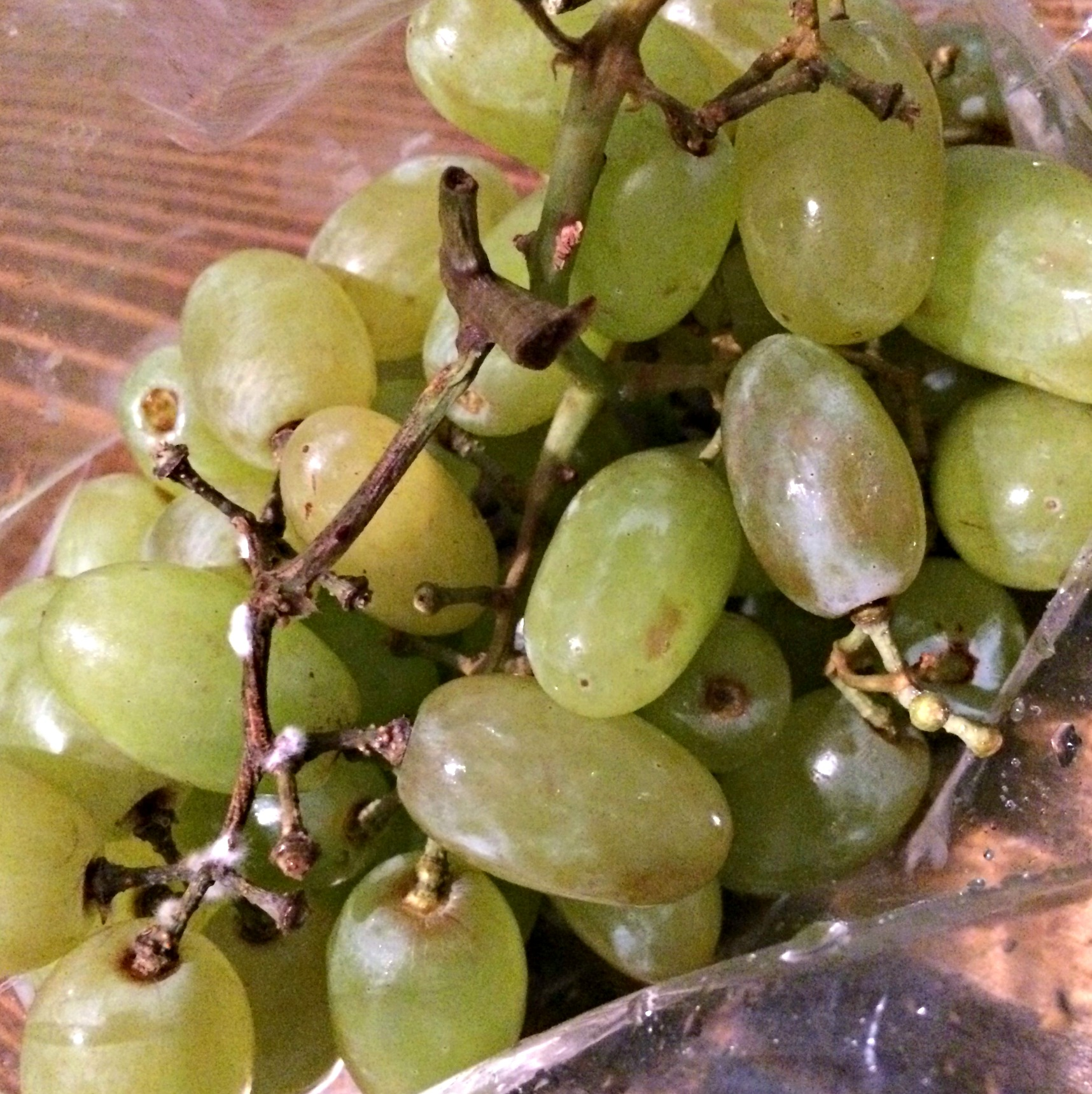 green grapes for a snack