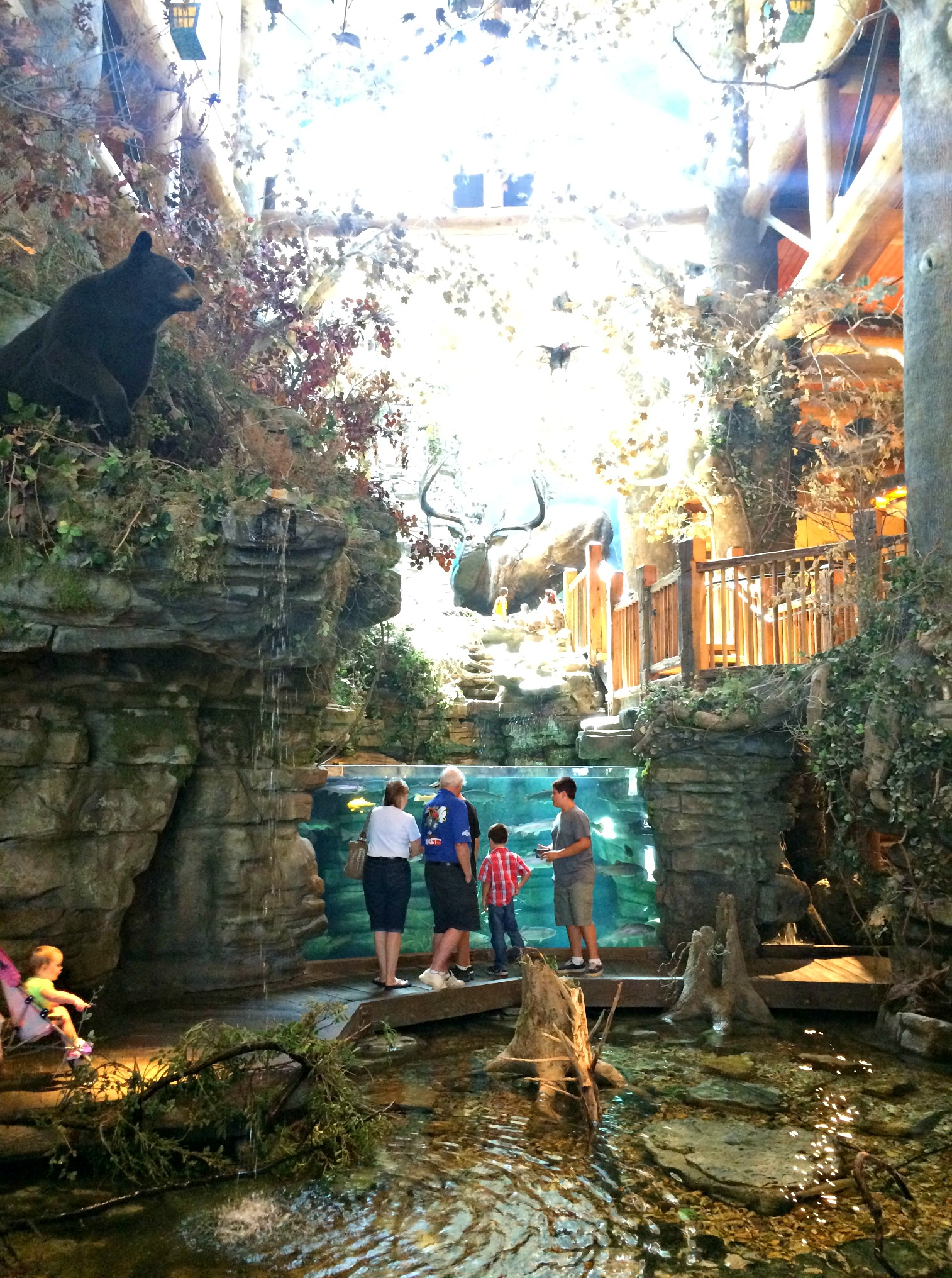 Bass Pro Shops Outdoor World Headquarters springfield, mo