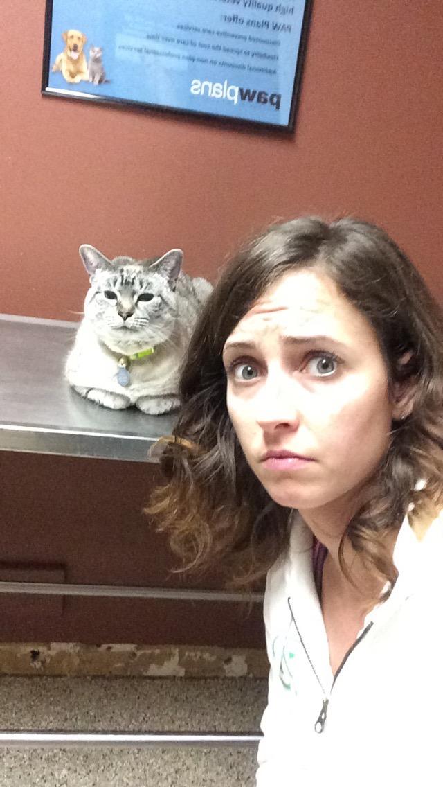 aspen at the vets