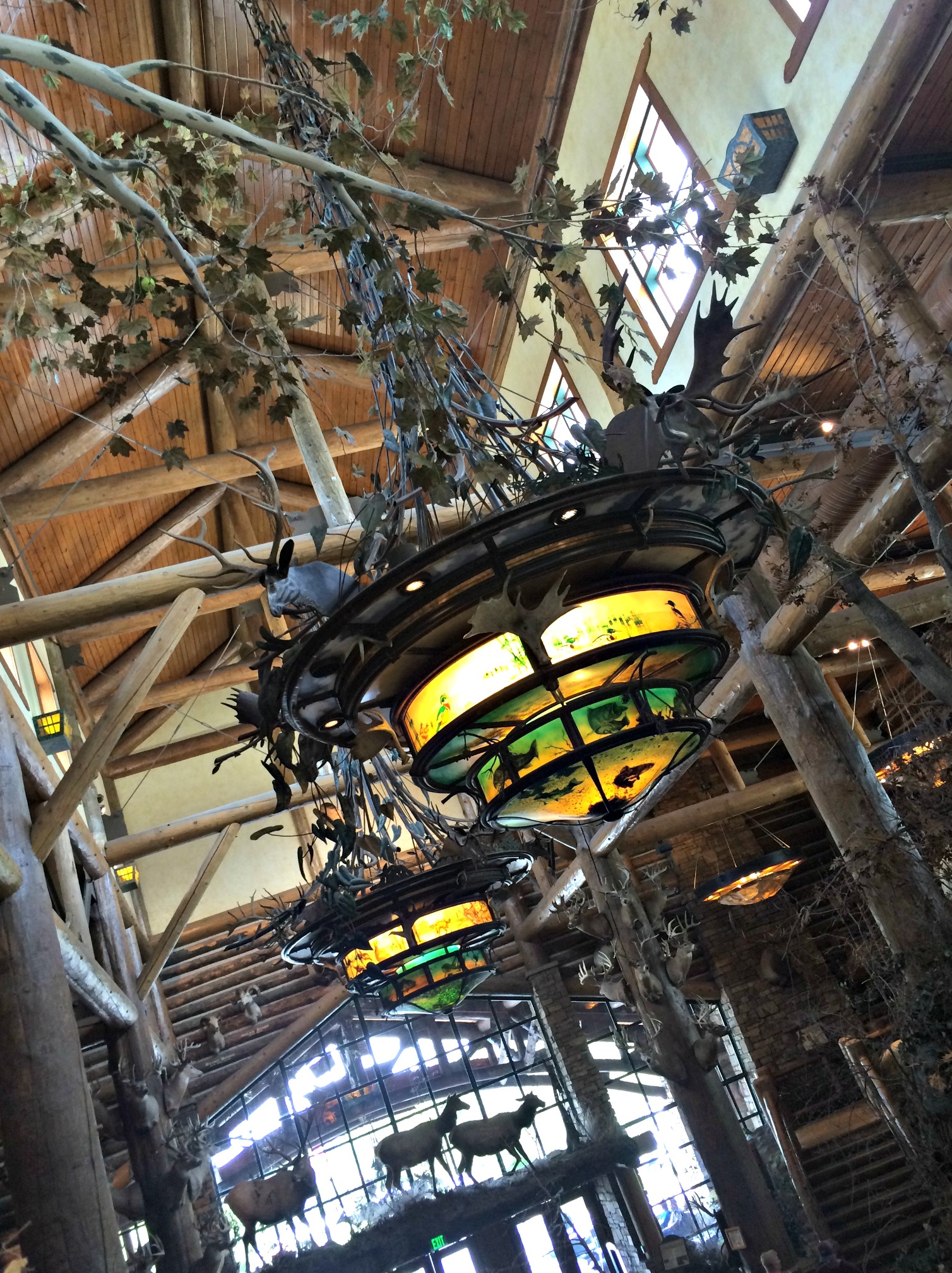 bass pro shops decorations