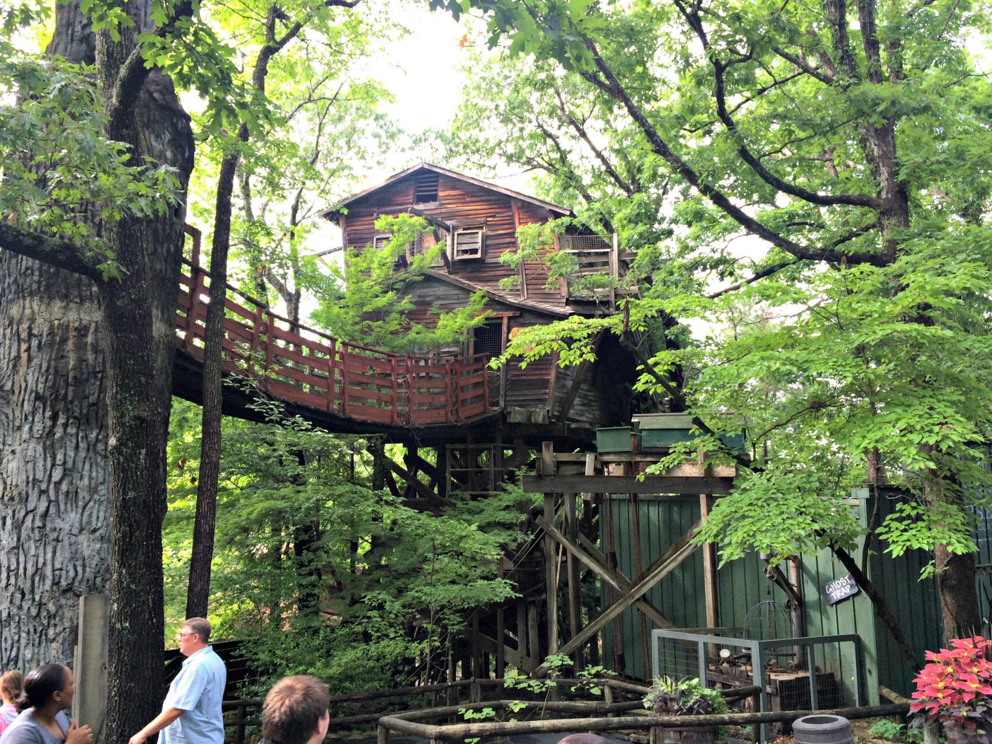 silver dollar city tree house