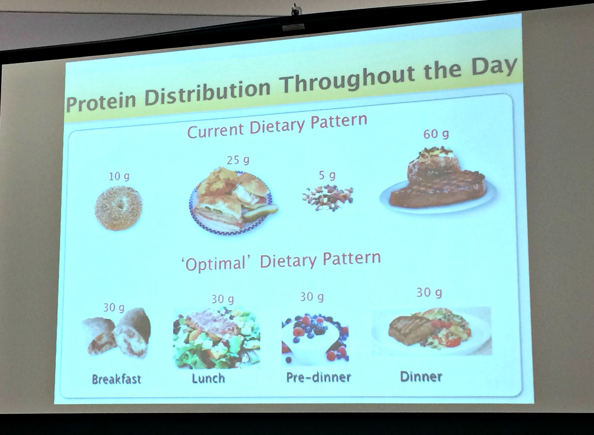 protein distribution throughout the day