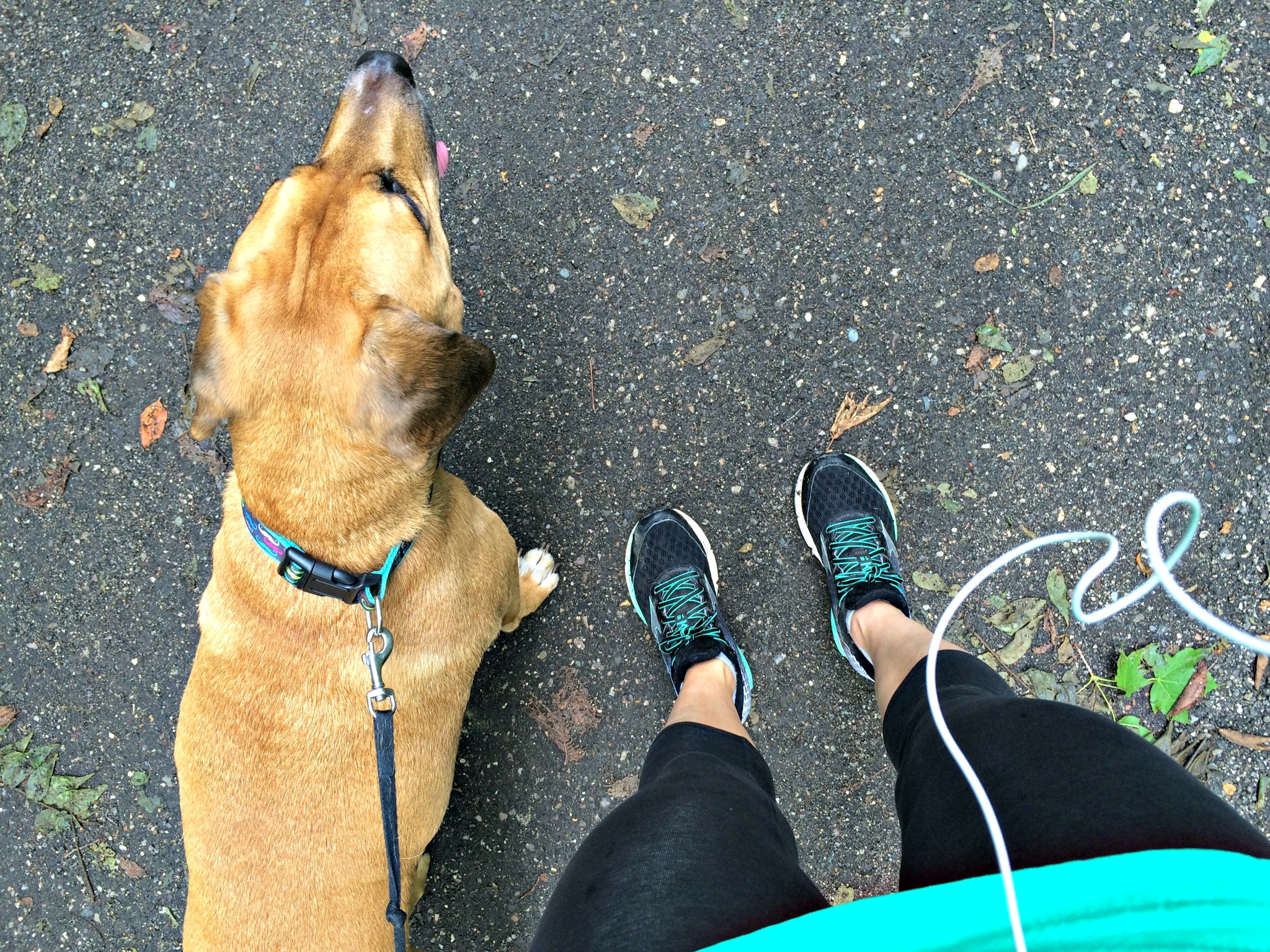 running the trails with mom and roadie