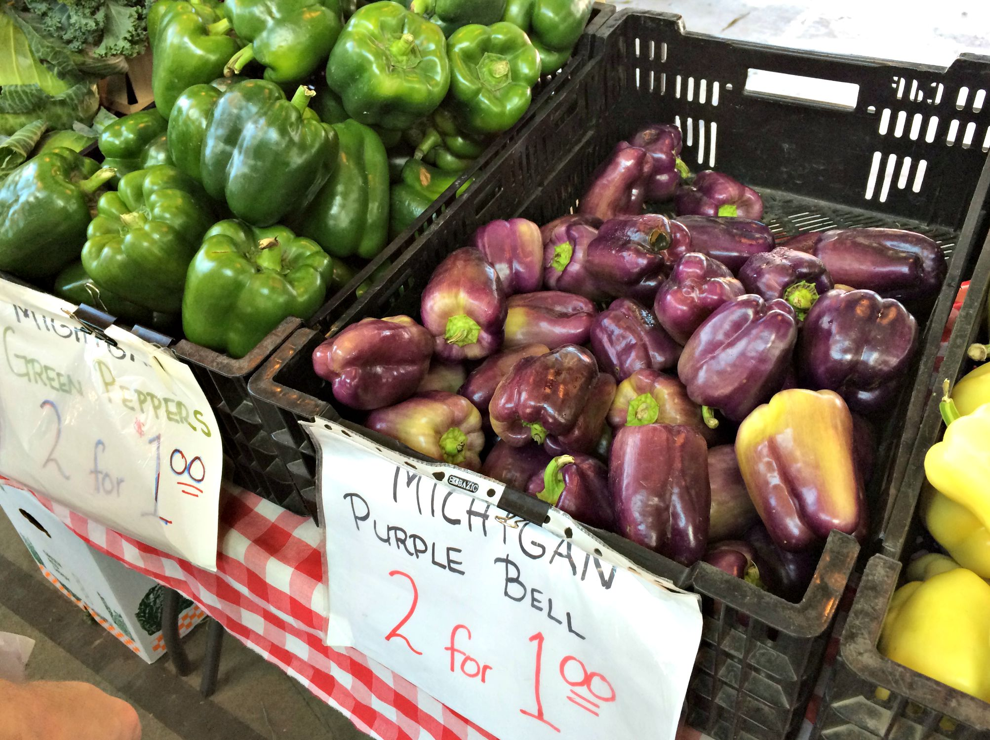 michigan purple bell peppers