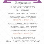 Stability Ball & Dumbbell Total Body Gym Circuit Workout