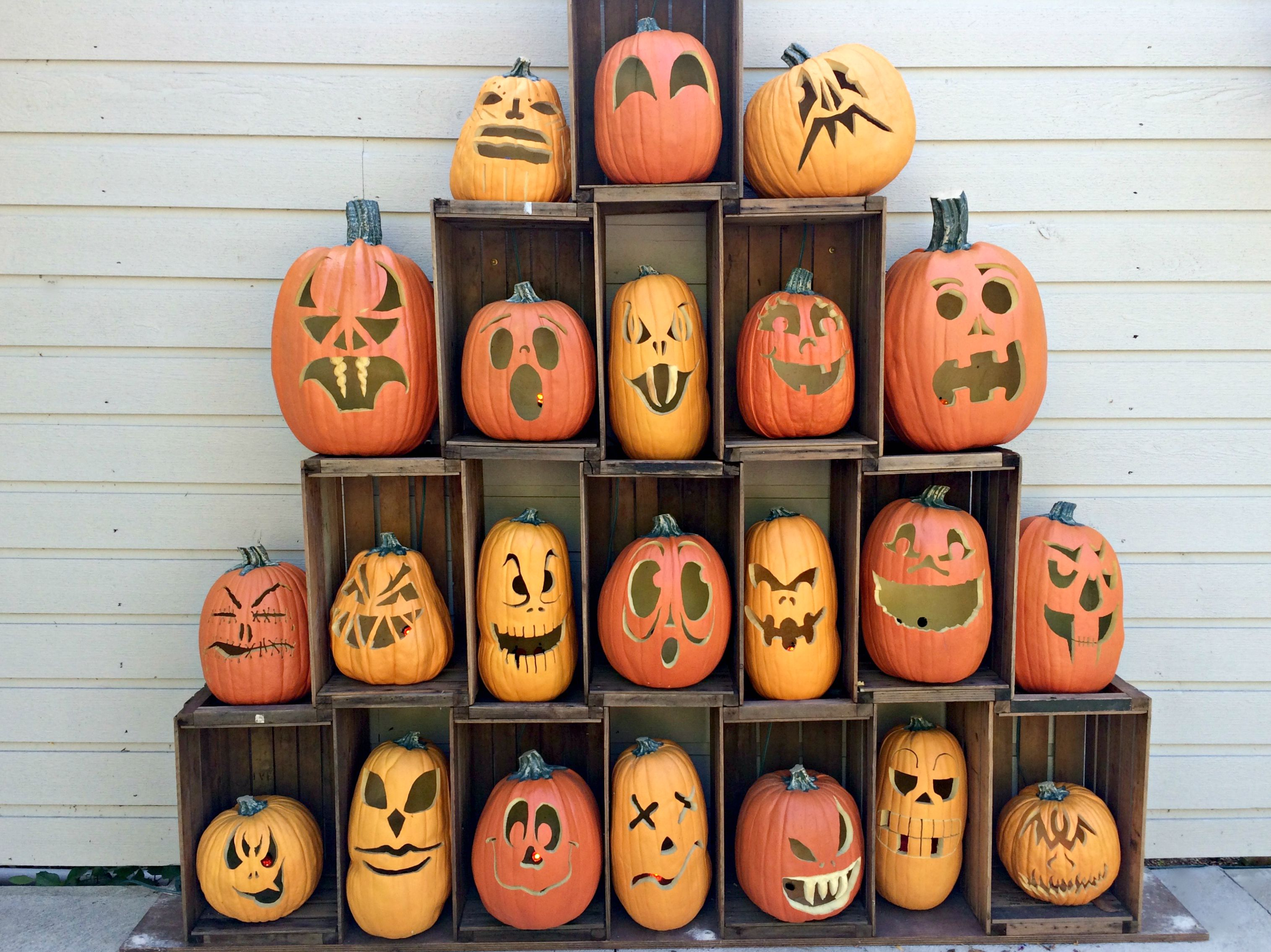 cedar point pumpkins for HalloWeekends