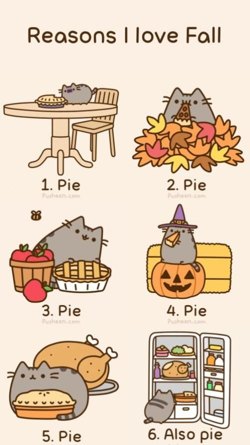 reasons i love fall