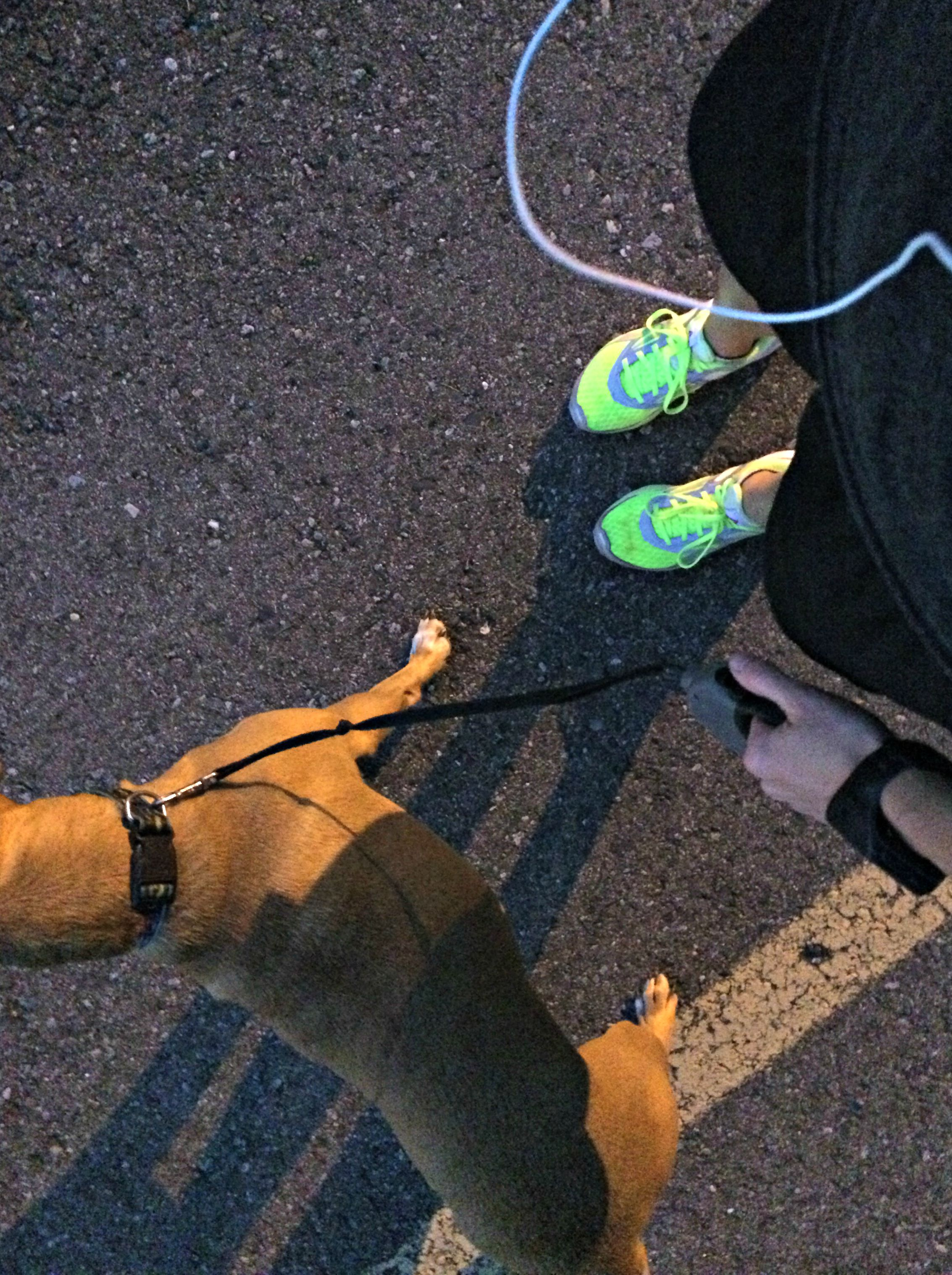 running with roadie at night