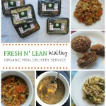 Fresh n' Lean Organic Meal Delivery Service (& Awesome Giveaway!)