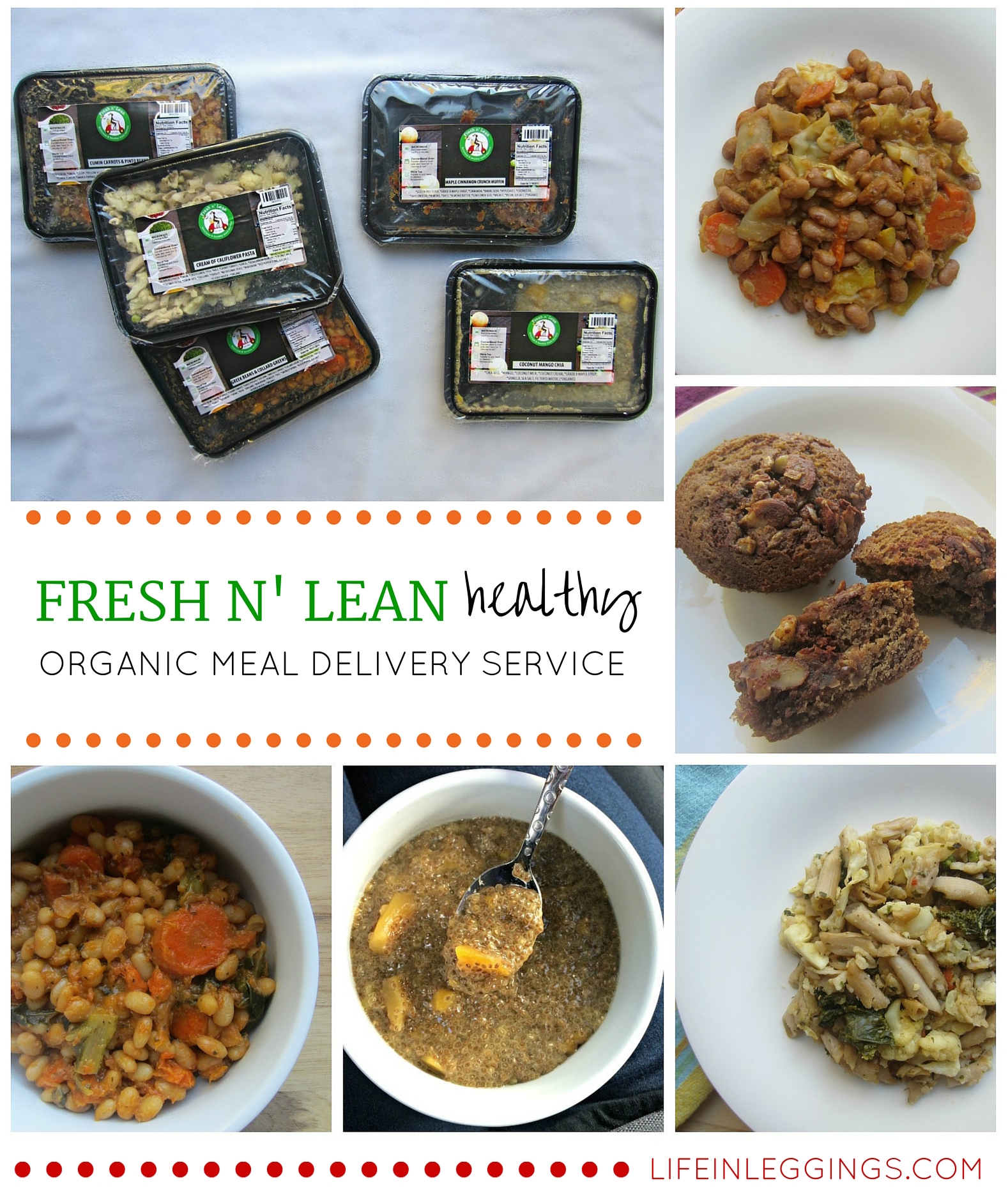 FRESH N' LEAN healthy and delicious organic meal delivery service