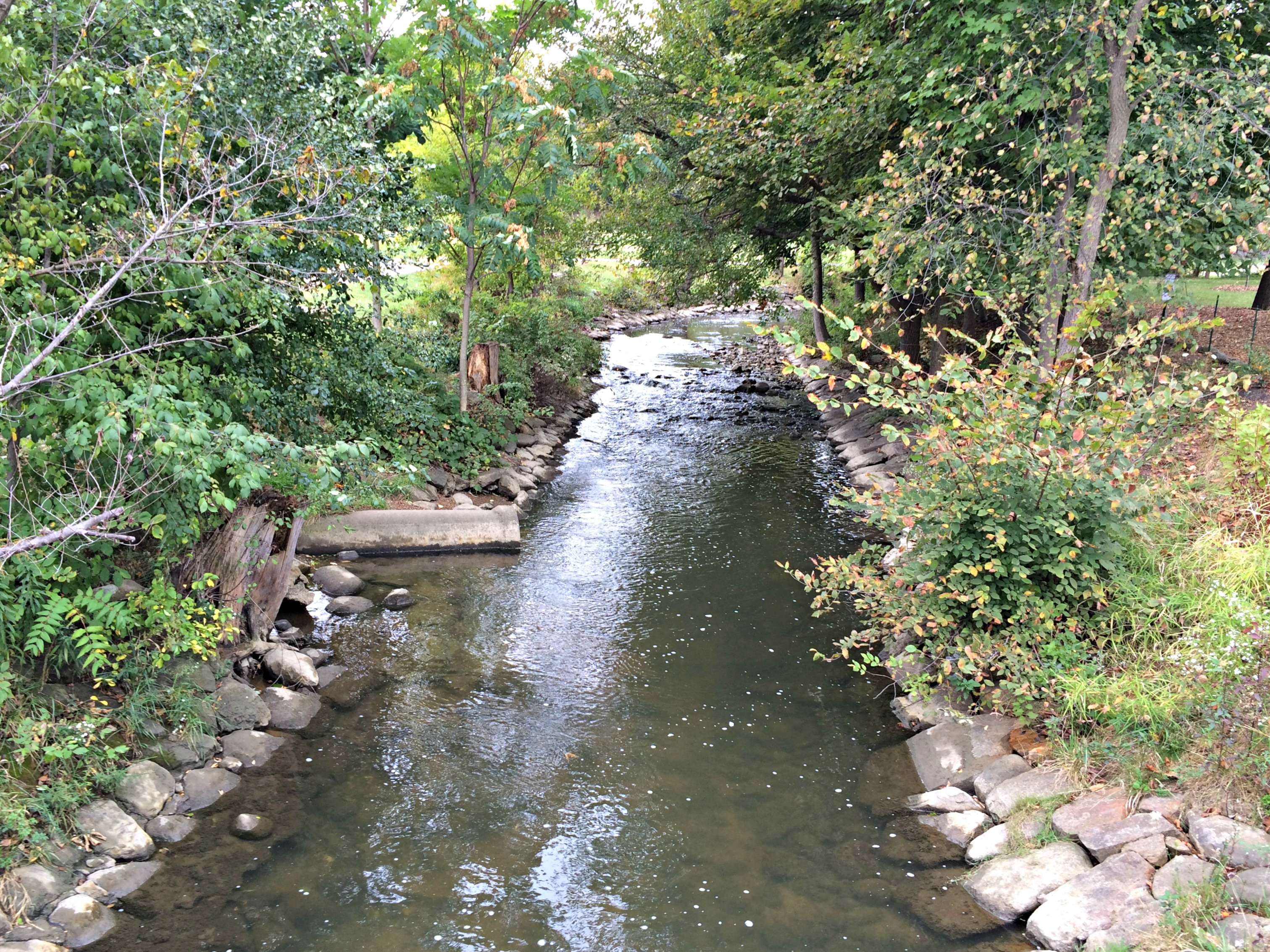 mill race northville creek