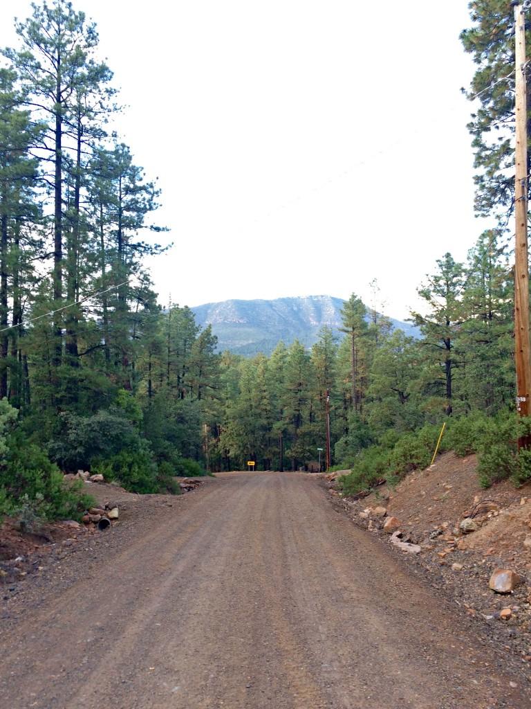 walking around pine arizona