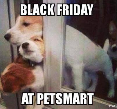 black friday at petsmart