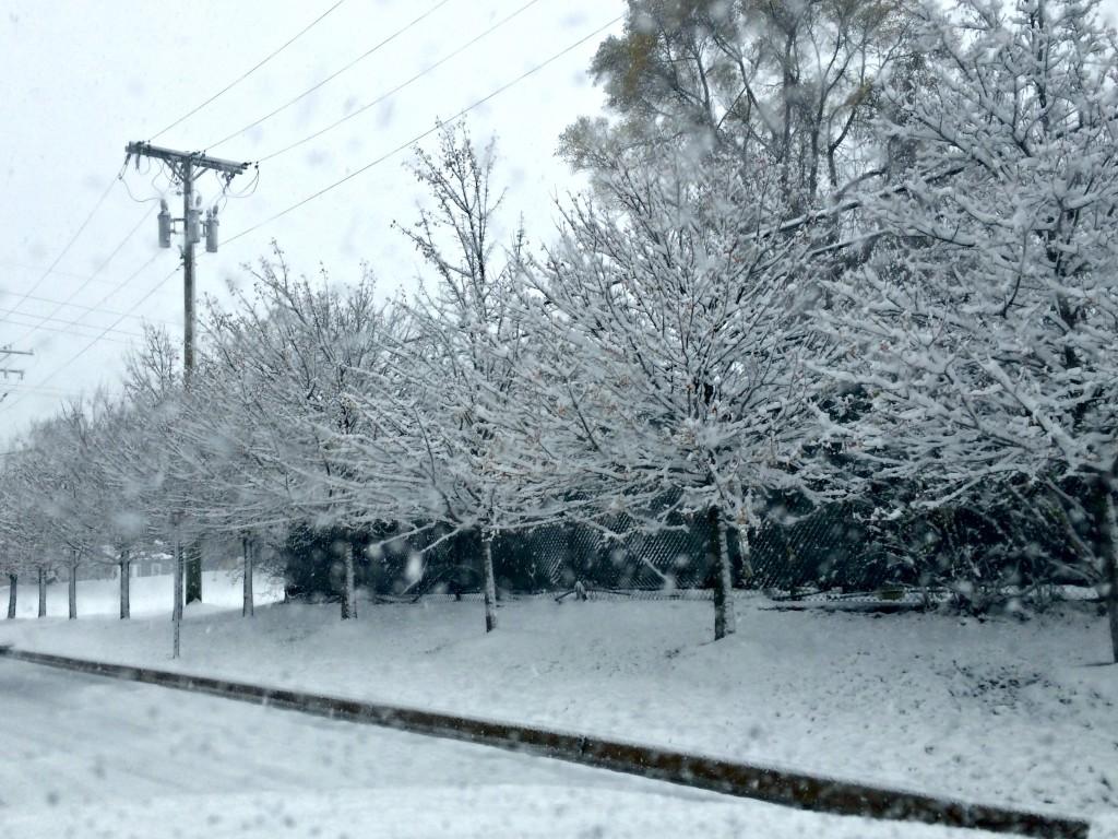 first winter snowfall 2015