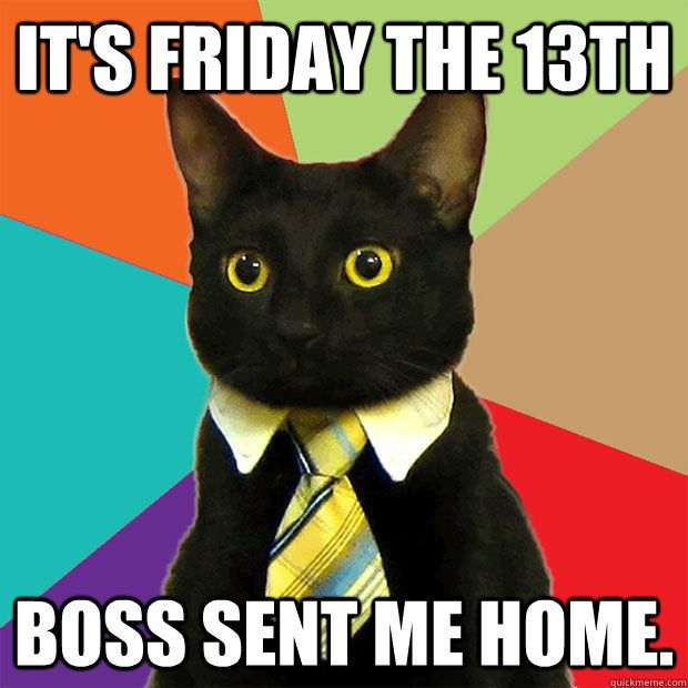 friday the 13th cat funny