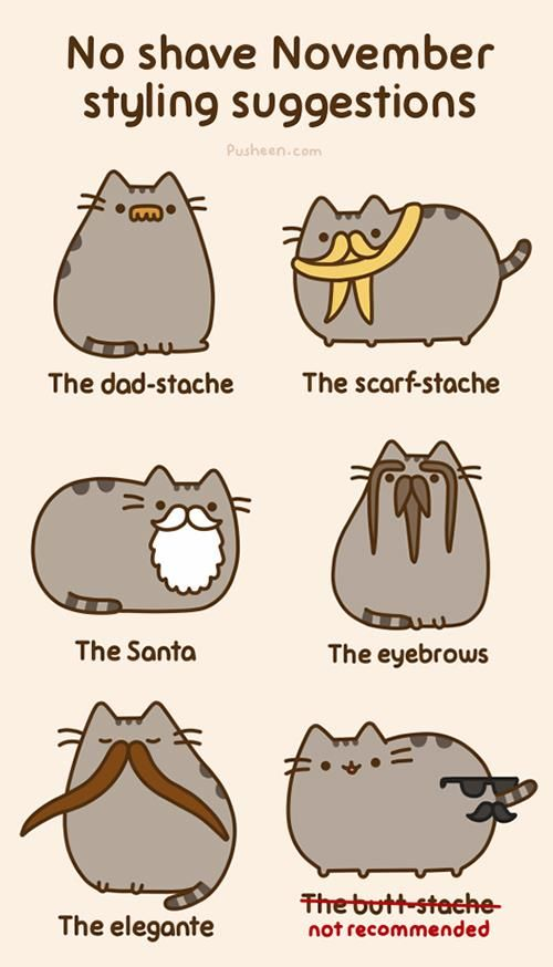 pusheen november mustaches