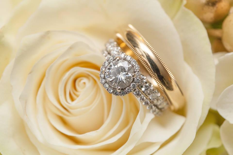 Alex and Alex Wedding rings