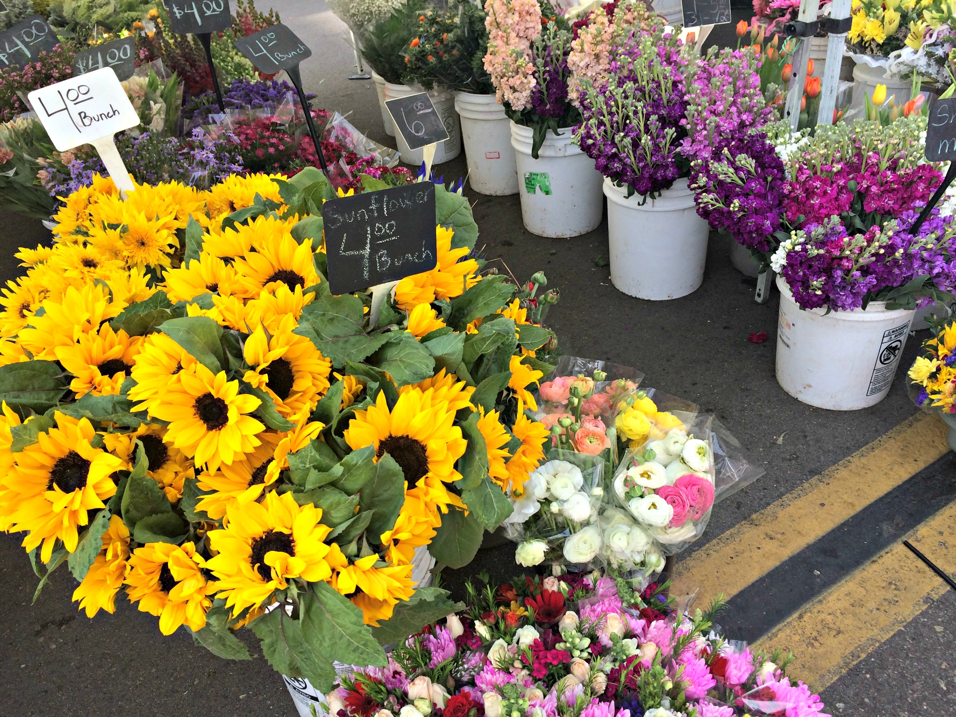 Little Italy Farmer's Market flowers
