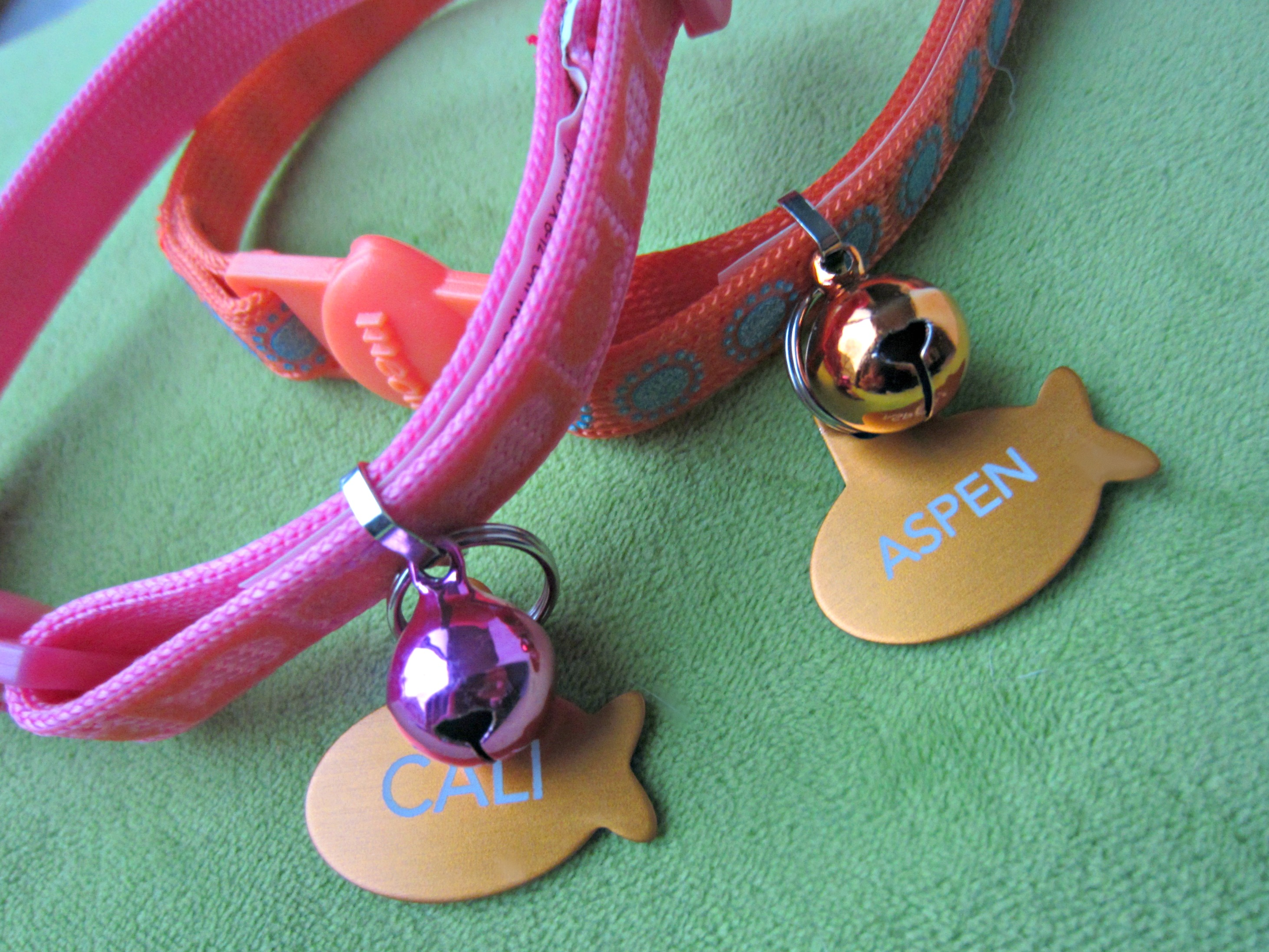 new cat collars for cali and aspen