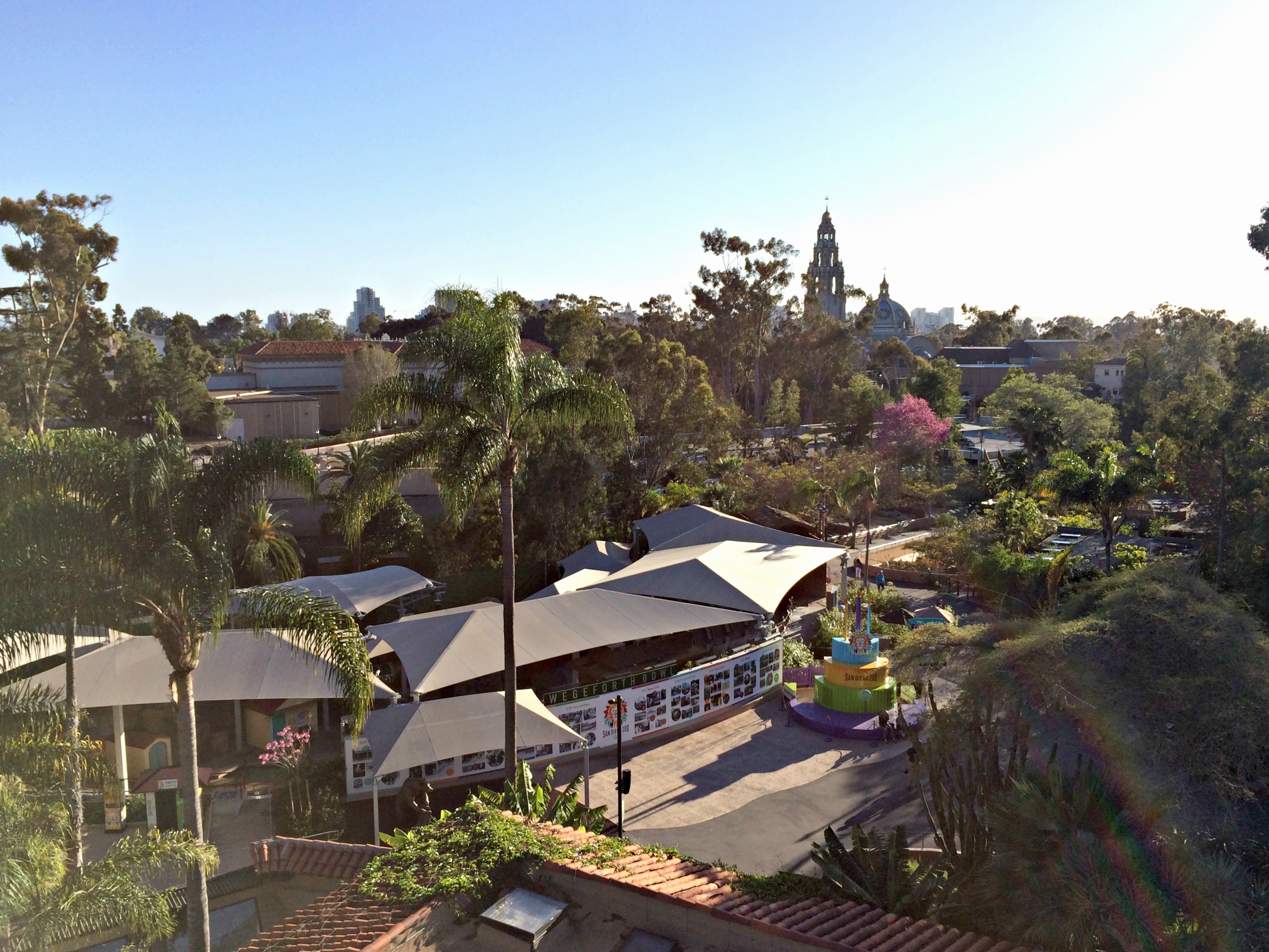 san diego zoo skyway view