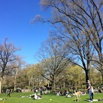 Tuesday Catch Up (Central Park & Brooklyn Updates)