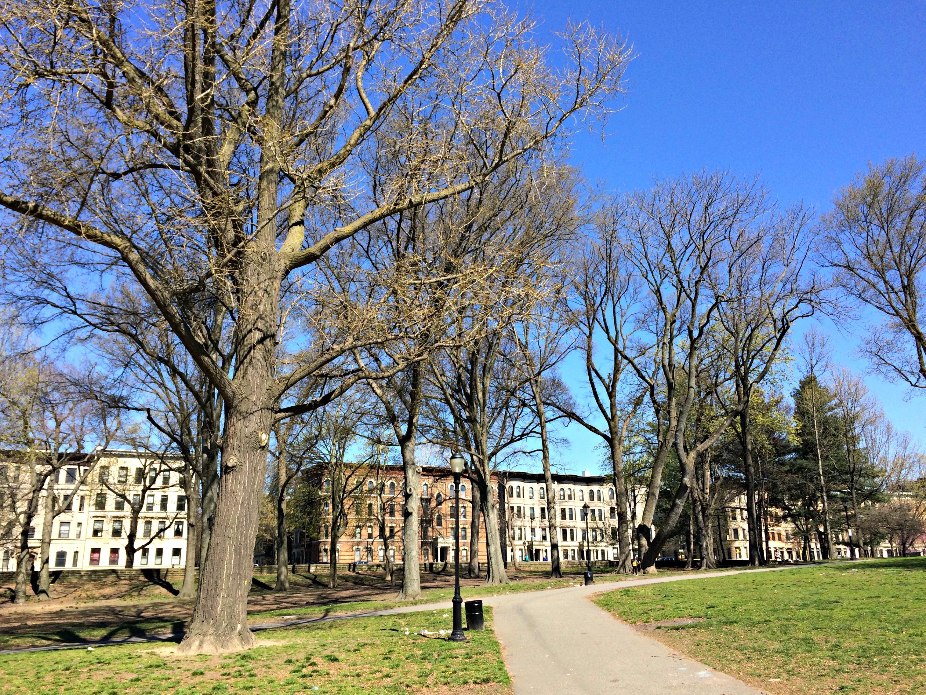 prospect park apartments